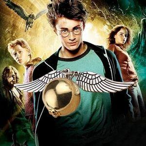 Harry Potter Golden Snitch, Bronze Necklace
